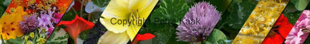 Overzicht eetbare bloemen