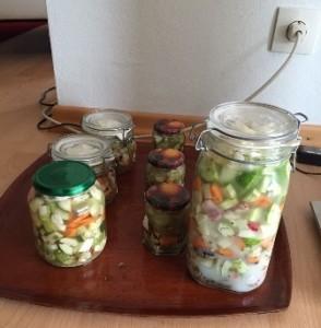 Komkommers fermenteren met melkzuur bacteriën